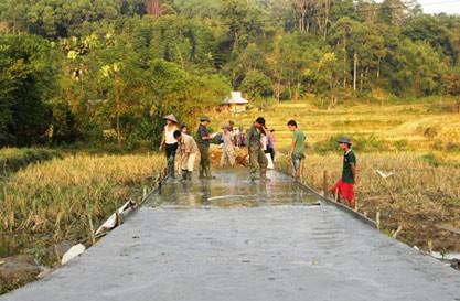Развитие внутренних ресурсов для строительства новой деревни на бывшей революционной базе Танчао - ảnh 4
