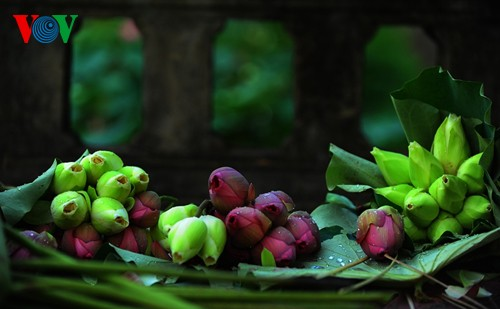 Приезжаем в Хюэ полюбоваться цветами лотоса - ảnh 12