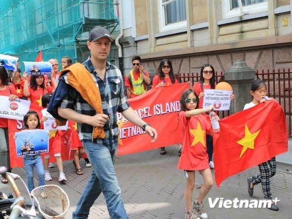 Вьетнамская диаспора за границей продолжает выступать с протестом против Китая - ảnh 1