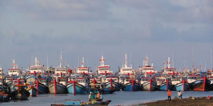 Оказание содействия рыбакам в ведении промысла в далеком море - ảnh 1