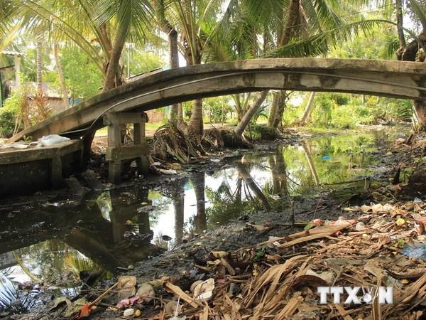 Активизируется сотрудничество между японскими и вьетнамскими предприятиями в области экологии - ảnh 1