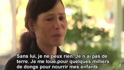 «Вьетнамские острова Хоангша: страдания от потерь» - фильм берет за душу - ảnh 1