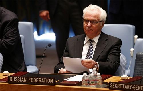 Россия представила СБ ООН свой проект резолюции по гибели малайзийского лайнера - ảnh 1