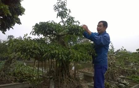Кханьтхиен – первая община провинции Ниньбинь, завершившая строительство новой деревни - ảnh 1