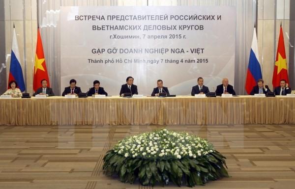 Состояние и перспективы российско-вьетнамского инвестиционного сотрудничества на новом этапе - ảnh 2