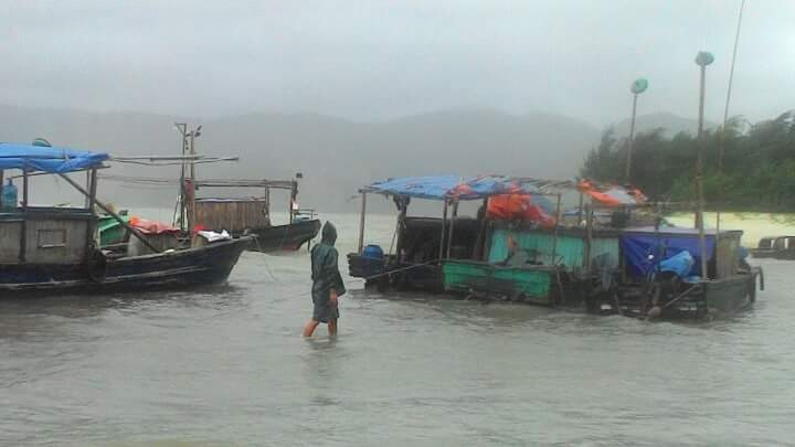 Тайфун «Куджира» превратился в тропический циклон над сушей - ảnh 1