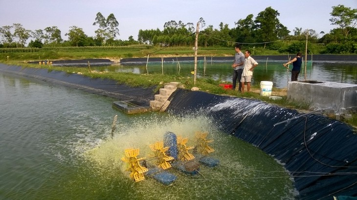 Провинция Куангнинь в основном завершила строительство новой деревни - ảnh 3