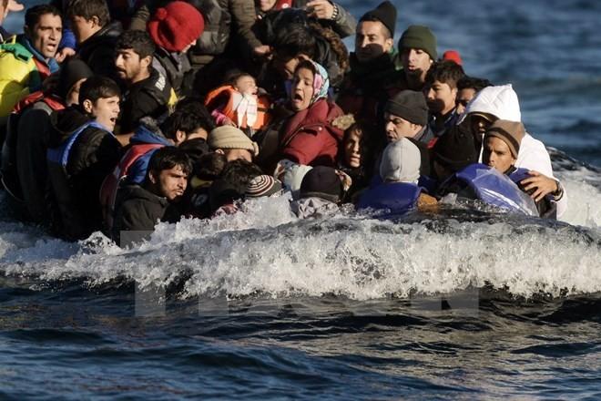 Действие пограничного контроля в Шенгенской зоне планируется продлить до конца 2016 г. - ảnh 1