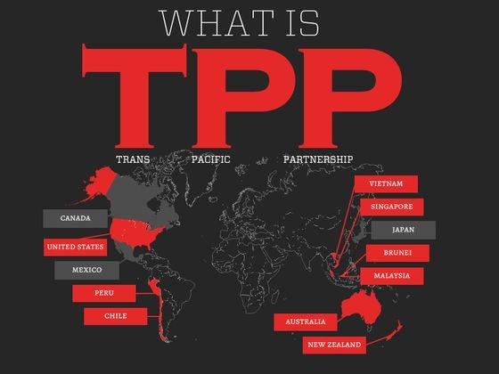 Соглашение о ТТП: вопросы, которые предприятия должны узнать - ảnh 1