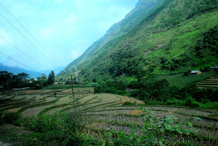 Местечко Донгван в красивейший сезон года - ảnh 5