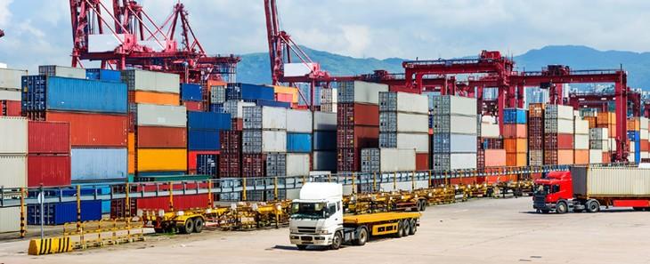 Развитие логистических услуг во Вьетнаме для содействия экспорту - ảnh 1