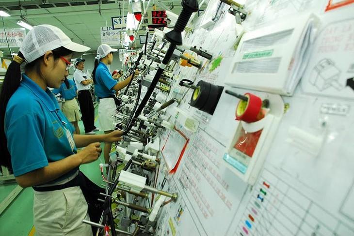 Активизация взаимодействия между отечественными предприятиями и предприятиями с ПИИ - ảnh 1