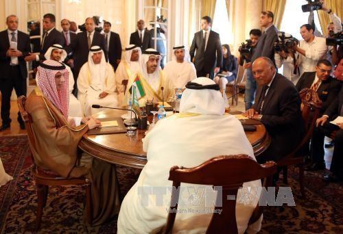 Дипломатические меры по снижению напряжённости в Персидском заливе - ảnh 1