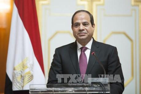 Президент Египта посетит Вьетнам с государственным визитом 6-7 сентября - ảnh 1