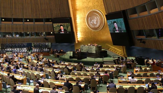 Вьетнам вносил и вносит свой вклад в осуществление благородных целей ООН - ảnh 2