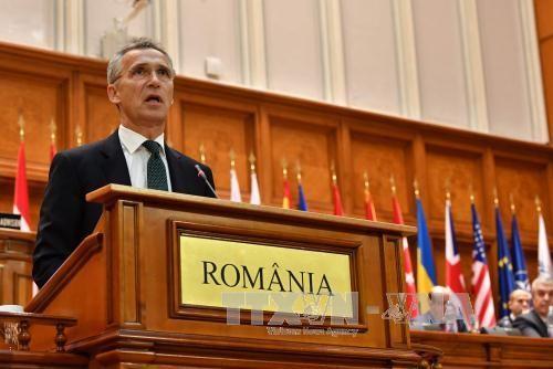 НАТО призвала США и Турцию как можно скорее найти решение визового кризиса - ảnh 1