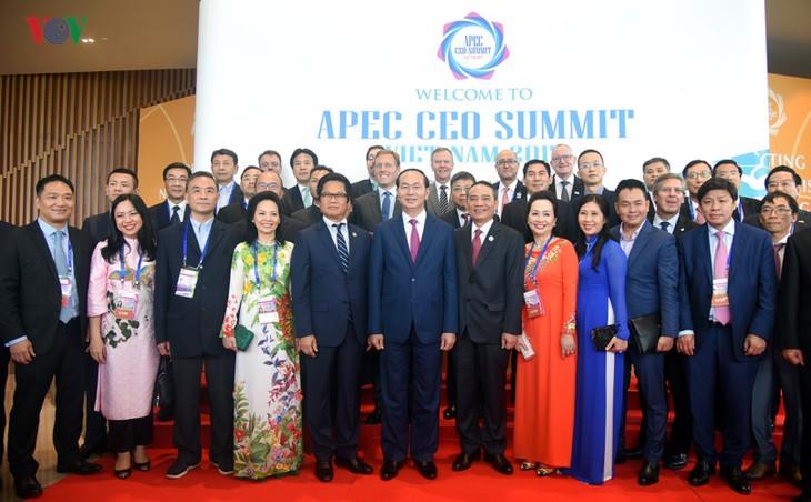 В городе Дананге открылся бизнес-саммит АТЭС 2017 - ảnh 2