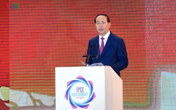 В городе Дананге открылся бизнес-саммит АТЭС 2017 - ảnh 1