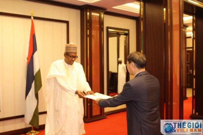 Вьетнам и Нигерия укрепляют двусторонние отношения - ảnh 1