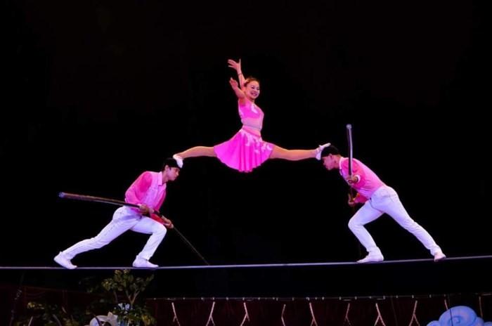 Первое международное цирковое гала-представление откроется во Вьетнаме 16 февраля - ảnh 1