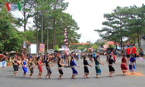 Состоялся уличный фестиваль культуры плато Тэйнгуен - ảnh 1