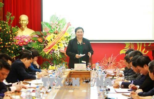 Тонг Тхи Фонг провела рабочую встречу с представителями Фонда социального страхования Вьетнама - ảnh 1