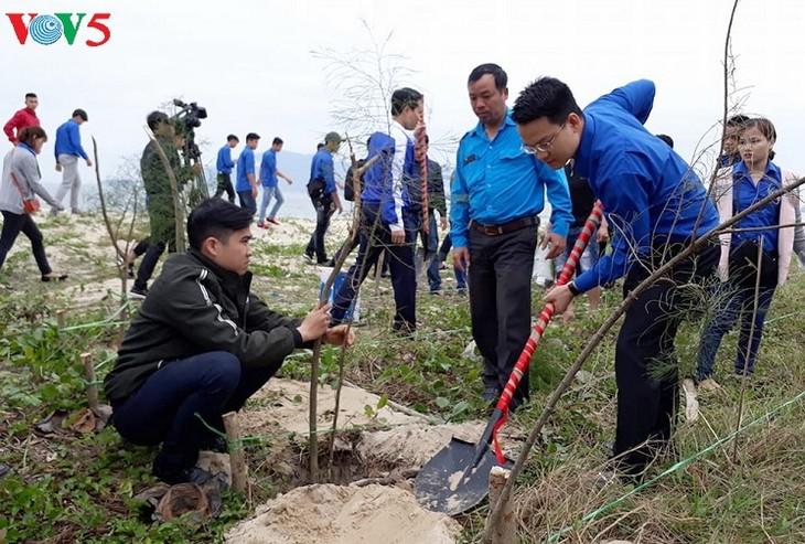 Во многих районах Вьетнама проводится праздник посадки деревьев в знак защиты лесов - ảnh 1