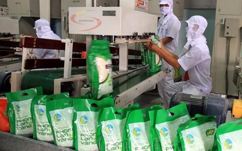 Вьетнам развивает рынок риса - ảnh 1