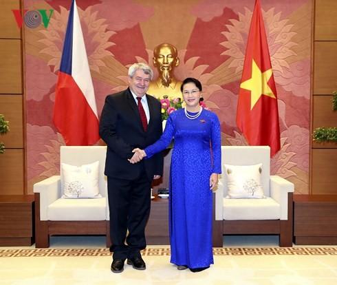 Главы парламента и правительства Вьетнама приняли вице-спикера палаты депутатов Чехии - ảnh 1
