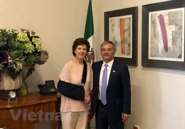 Вьетнам и Мексика активизируют культурный обмен в целях укрепления сотрудничества - ảnh 1