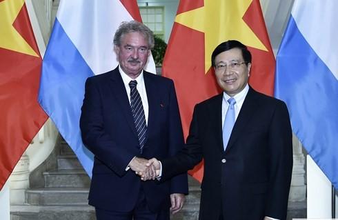 Фам Бинь Минь провёл переговоры с министром иностранных дел Люксембурга - ảnh 1
