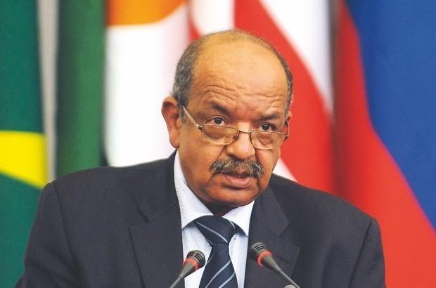 Вьетнам и Алжир стремятся к дальнейшему развитию отношений сотрудничества - ảnh 1