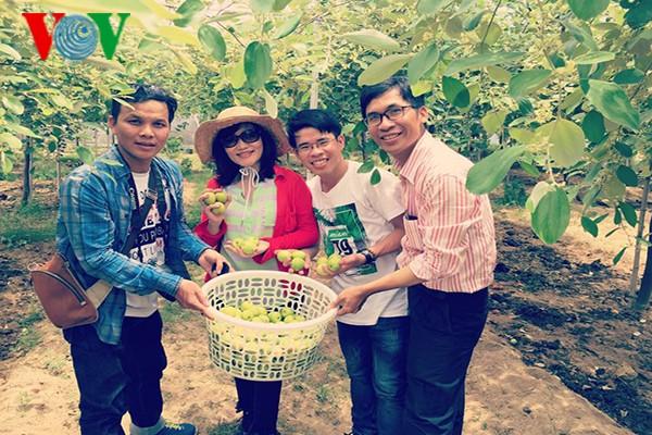 Познавательный туризм в деревнях провинции Ниньтхуан - ảnh 2