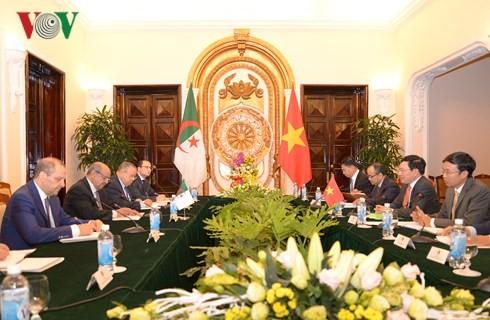 Вьетнам и Алжир активизируют двусторонние отношения - ảnh 2