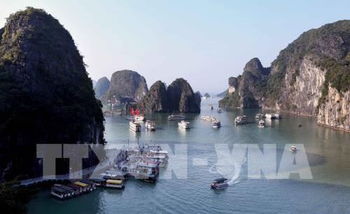 АТF способствует продвижению имиджа туризма Вьетнама - ảnh 1