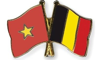 В Ханое прошла вьетнамо-бельгийская дружественная встреча - ảnh 1