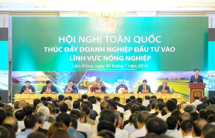 Вьетнам содействует инвестициям в сферу сельского хозяйства - ảnh 1