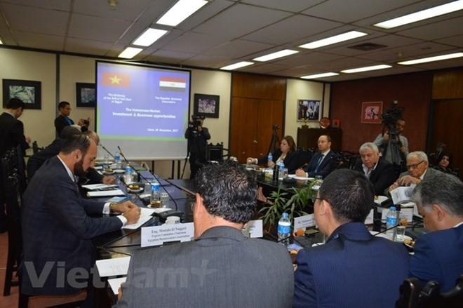 Новая веха в отношениях Вьетнама с Эфиопией и Египтом - ảnh 3