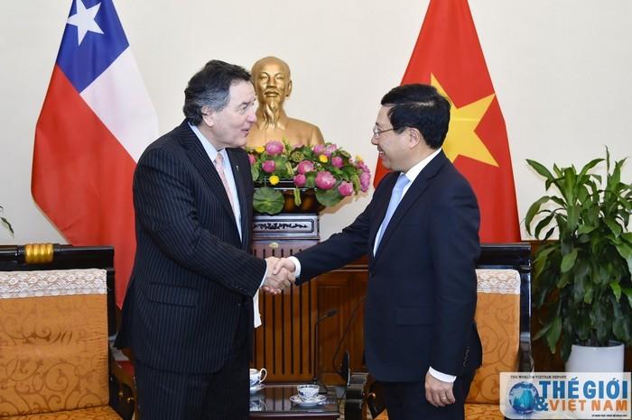 Вице-премьер, глава МИД Вьетнама принял министра иностранных дел Чили - ảnh 1