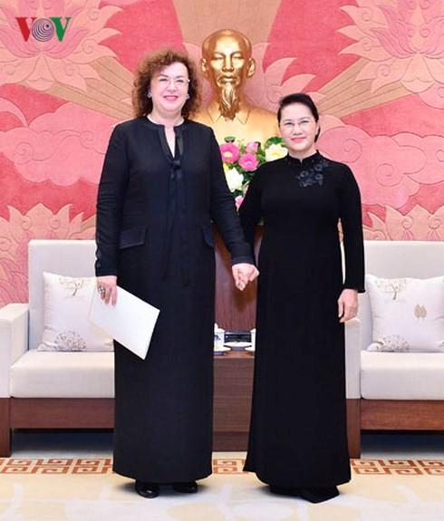 Председатель Нацсобрания Нгуен Тхи Ким Нган приняла зампредседателя Госдумы РФ - ảnh 1