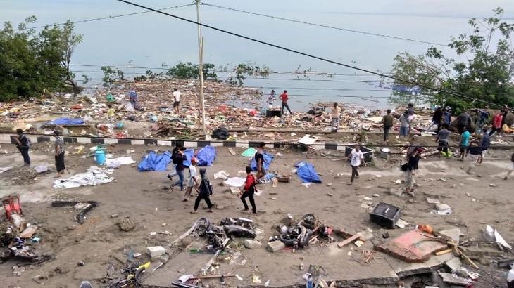 В Индонезии в результате землетрясения и цунами погибли 30 человек - ảnh 1