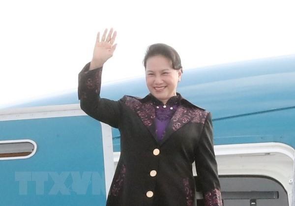 Нгуен Тхи Ким Нган прибыла во Францию с официальным визитом - ảnh 1