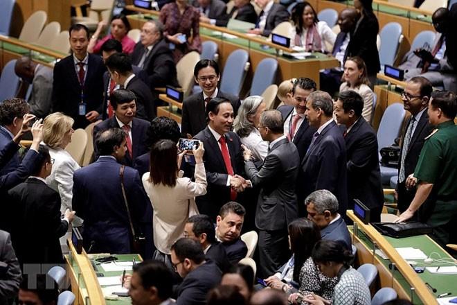Вьетнам прилагает усилия для определения конкретных задач на посту члена СБ ООН - ảnh 1