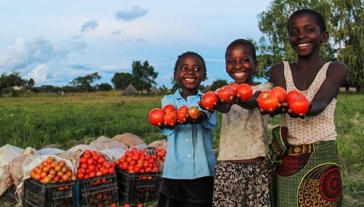 Африканская континентальная зона свободной торговли: мост к процветанию - ảnh 1