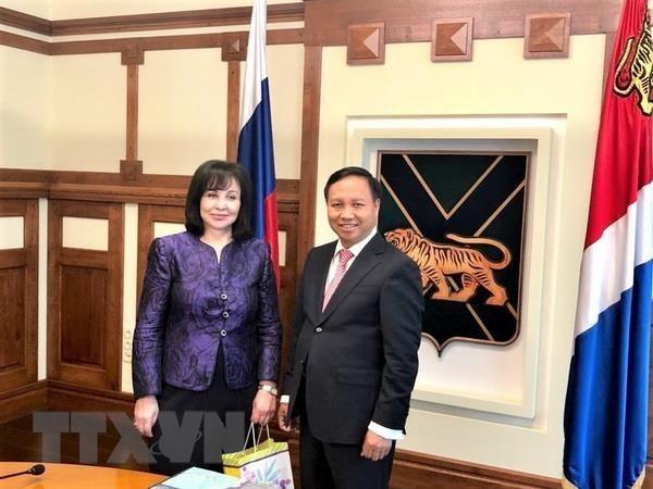 Сотрудничество между Приморским краем и Вьетнамом динамично развивается - ảnh 1