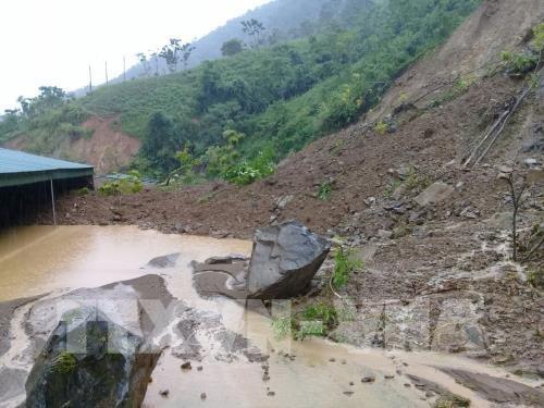 Тайфун Wipha унес жизни 4 человек, 13 числятся пропавшими без вести во Вьетнаме - ảnh 1