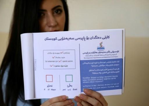 Les Kurdes d'Irak font fi des menaces de Bagdad contre le référendum d'indépendance - ảnh 1