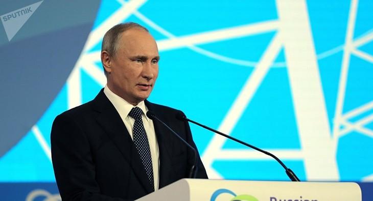 Vladimir Poutine critique les sanctions économiques à l'encontre de la Russie - ảnh 1