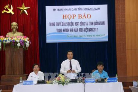 Activités de l'année de l'APEC 2017 à Quang Nam - ảnh 1