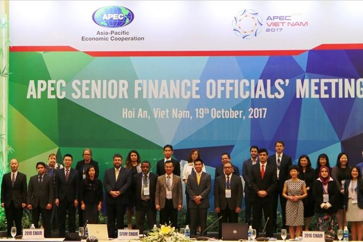 Réunion des hauts officiels des finances de l'APEC 2017 - ảnh 1